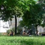 Yoga im Park - Bild 34