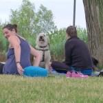 Yoga im Park - Bild 41
