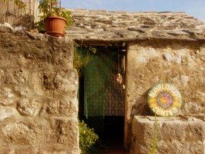 Our Sunflower Retreat! Dalmatia Croatia