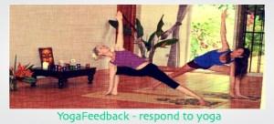 YogaFeedback – respond to issues happening in yoga w/ Jamie Wood