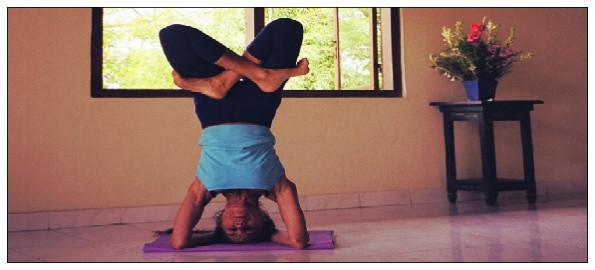 Ann Barros has been Teaching Iyengar for 41 Years