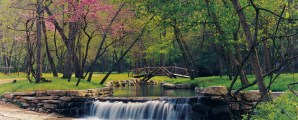 Explore Missouri Yoga with Yoganomics® • the blueprint of yoga •