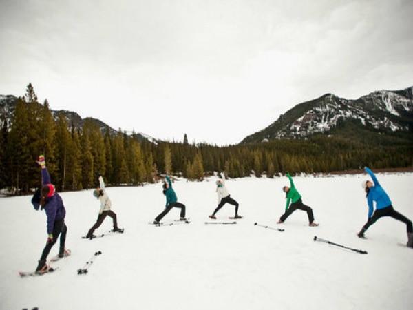 Frozen Yoga | Yoganomics