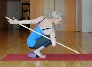 Alison West, Yoga Union, Yoga Backcare and Scoliosis Center, Indie Yoga, Yoganomics, Independent Yoga, Brian Castellani, Sarah McLaughlin, Heidi McGehee