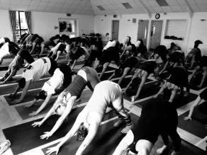 Photo by The Yoga Shala