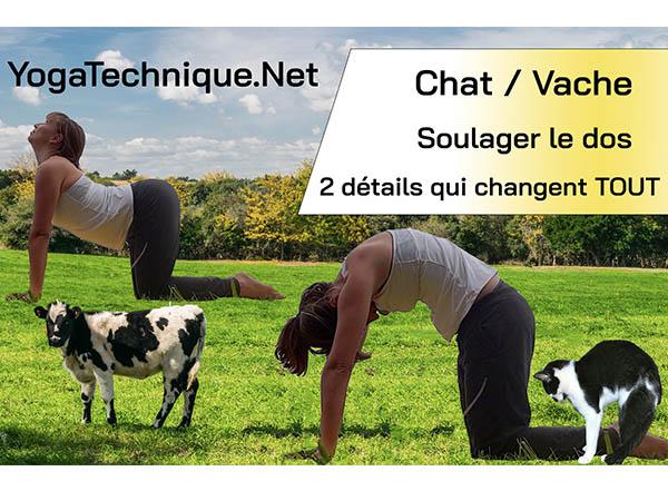 posture du chat et de la vache pour soulager le dos