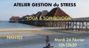 Ateliers théoriques et pratiques sur différents thémes relatifs au yoga ou à la yogathérapie.