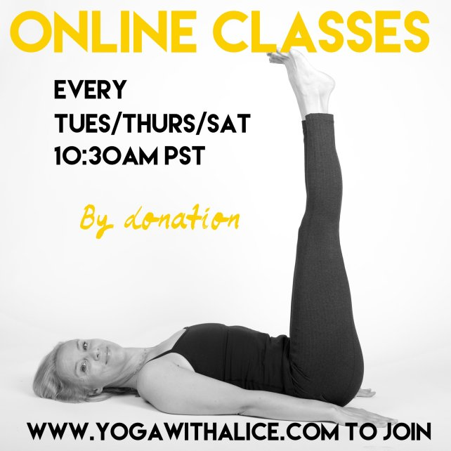Online Classes with Alice