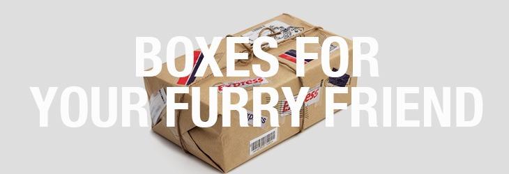 pets-subscription-boxes