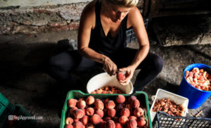 dirty-dozen-foods