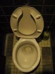 トイレ掃除に便利なアルコール除菌剤!