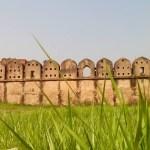 hagigange-fort -wall