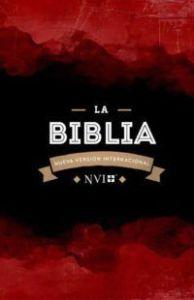 Biblia NVI Granate
