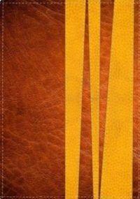 La Biblia de Promesas Edición para jóvenes
