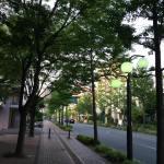 ぐるっと引き返して百道通りへ。木陰の下を颯爽と。