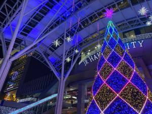 2019博多駅イルミネーション点灯式