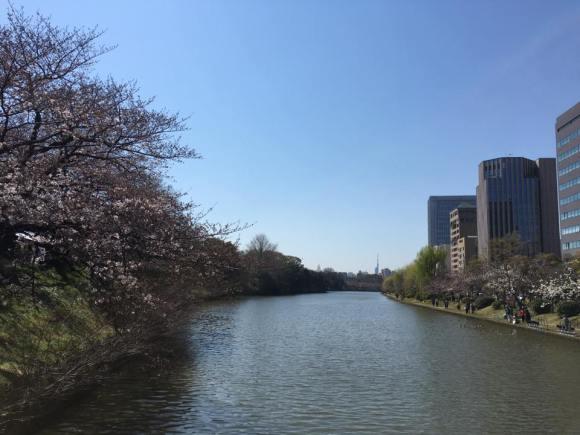 平和台球場跡地へ続く橋よりお濠と遠くに見える福岡タワー