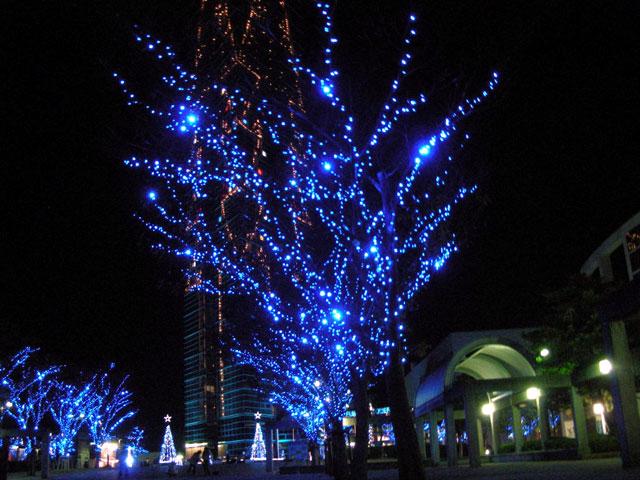 福岡タワー前のイルミネーション