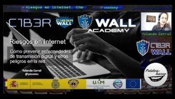 Riesgos en Internet. Cómo prevenir enfermedades de transmisión digital y otros peligros en la red