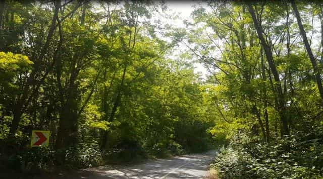 Çilingoz Tabiat Parkı Kamp Alanı Çatalca