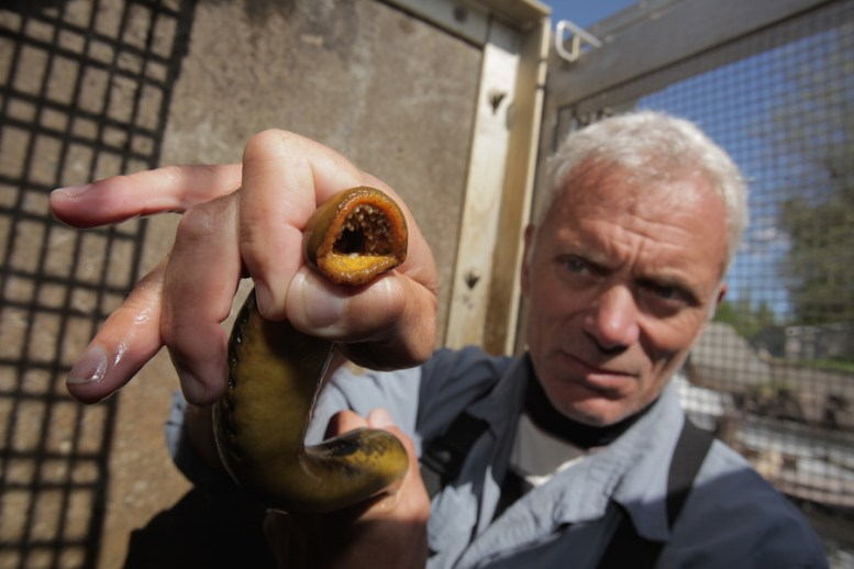 Jeremy Wade holding a river monster.