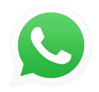 whatsapp message forward