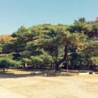 Korea tour: Yonghao Photography, Iphone