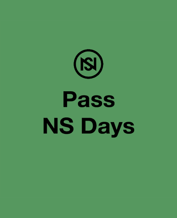 Pass NS days festival nuits sonores