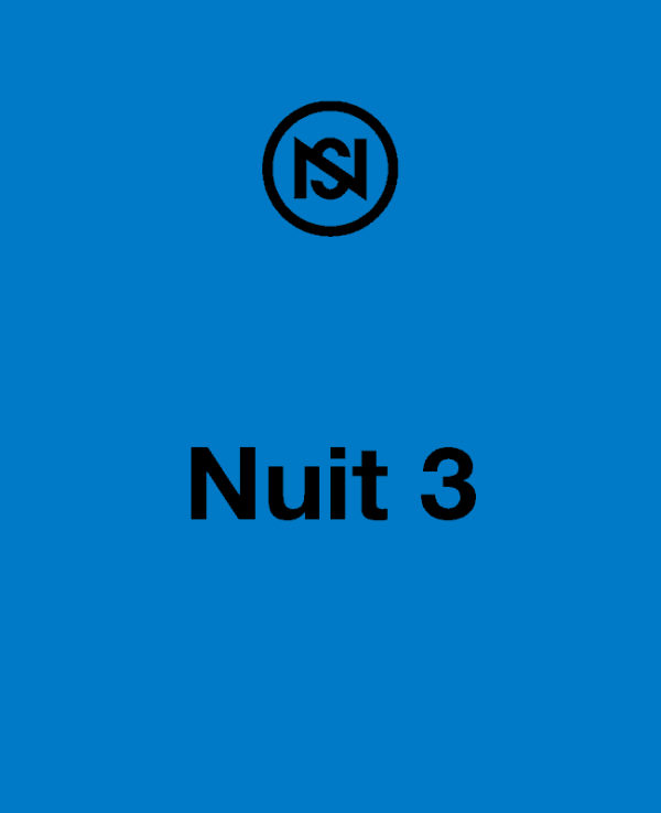 Nuit 3, festival nuits sonores 2019