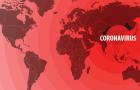 [칼럼] 코로나로 전기를 맞이한 디지털 헬스케어, 한국은?