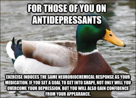 "The duck from ""Actual Advice Mallard"" meme-- a green, brown and white male duck that's always accompanied by white text with life hacks and practical advice. The text printed on top is listed below."