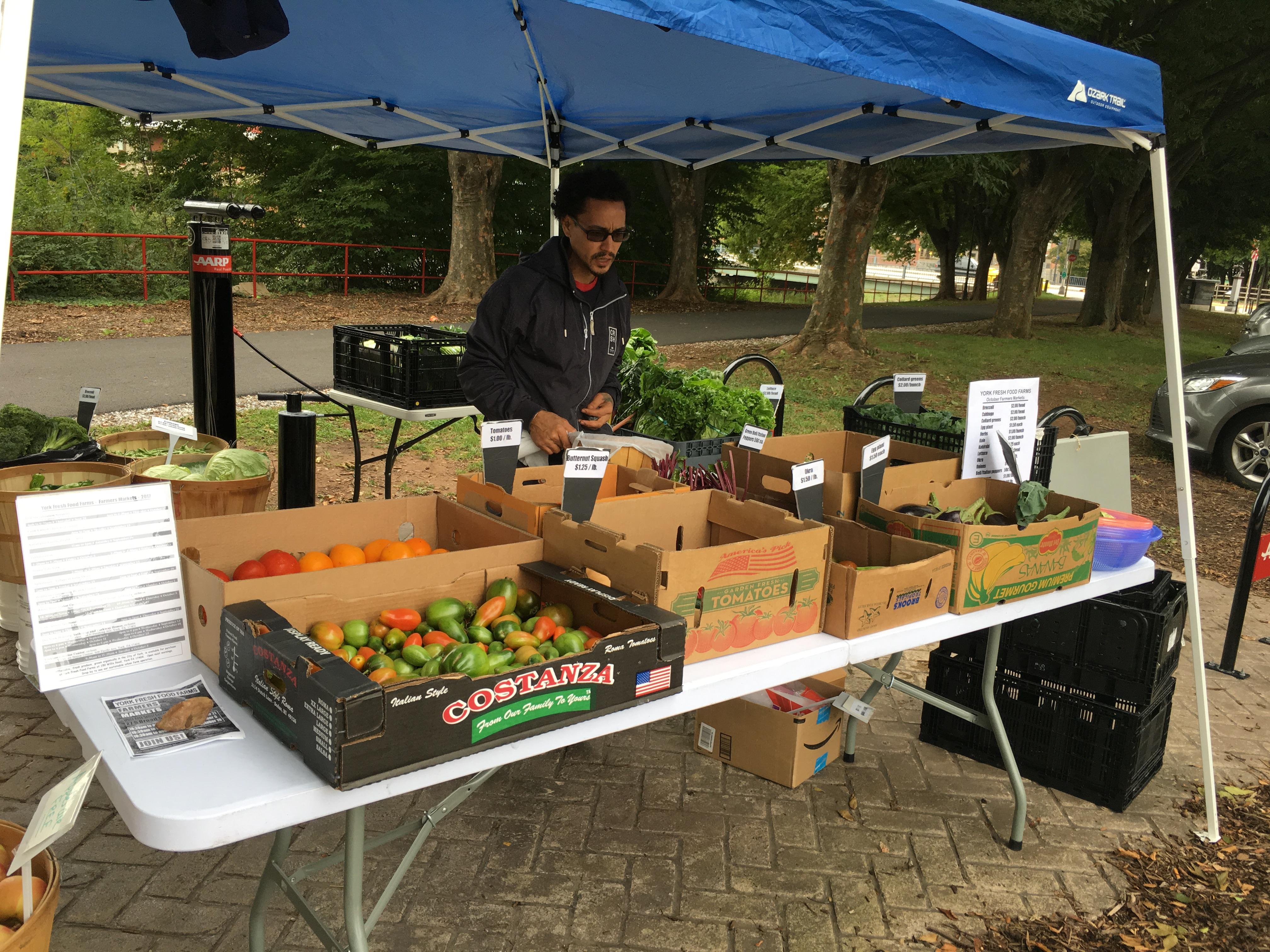 IMG_3208 – York Fresh Food Farms