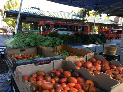Friday market at rabbittransit