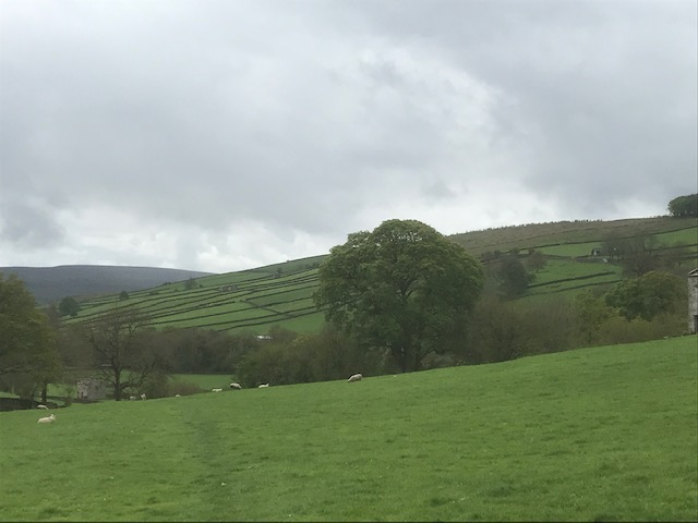 Burton cow pasture in the middle distance, viewed from near Riddings farm
