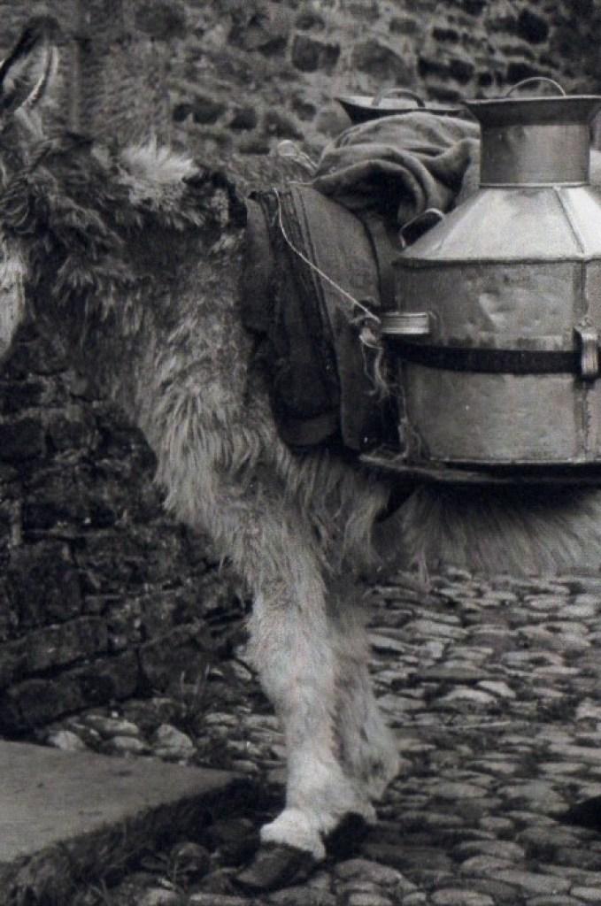 Jimmy carrying backcans outside a barn near castle Bolton. Courtesy of Steve Bostock
