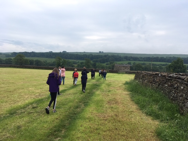 Walking through one of the meadows at Lowlands Farm