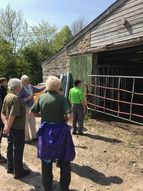Sally Stone describing the dairy at Town Head Farm