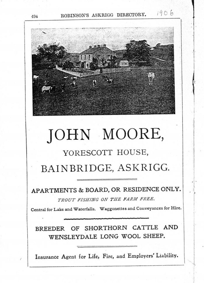 Advert for Yorescott by John Moore 1906