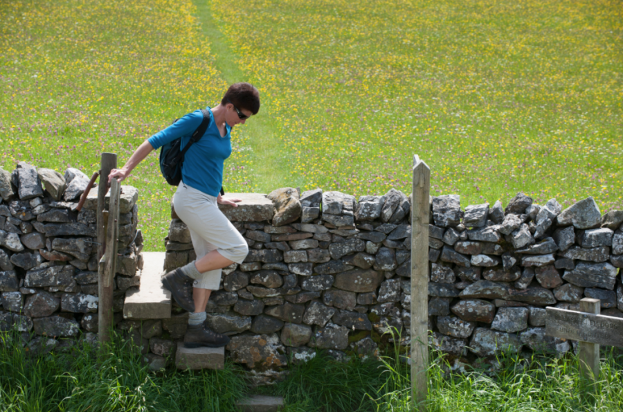 Photography showing a person walking through a stile in a meadow.