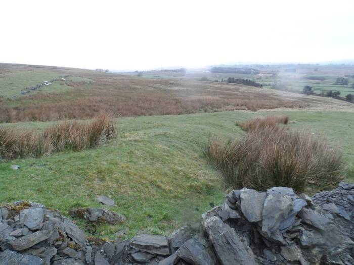 Eastern rampart looking north, Loup Fell Roman marching camp. Photo courtesy of Graham Hooley