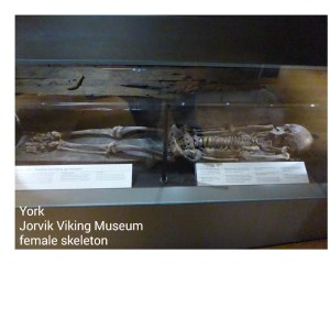 Jorvik Viking Museum York