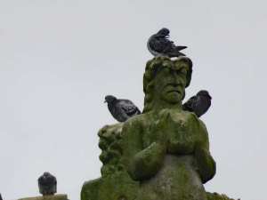 Picture from Ron and Lida - Statue and Pigeons York