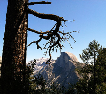 Four Mile Trail Featured 5 Great Hikes To Experience At Yosemite