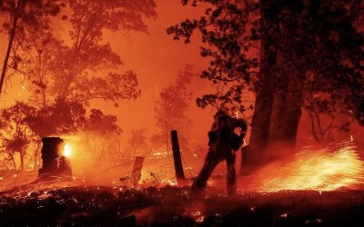 Creek Fire & YLP