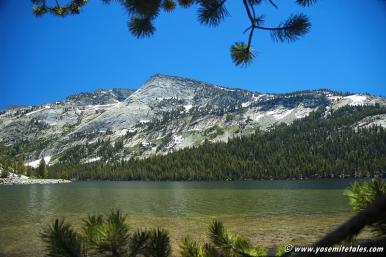 Tenaya Lake Picnic Grounds