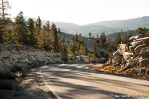 strata-at-roadside