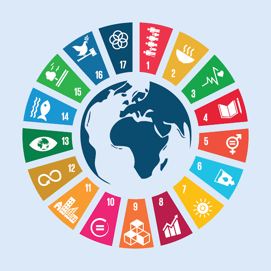 Why Africa May Not Deliver the SDGs by 2030