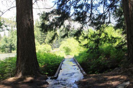 Wandeling Zumwalt Meadow