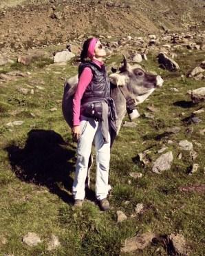 cow lady mountain