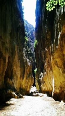 torrent pareis gorge